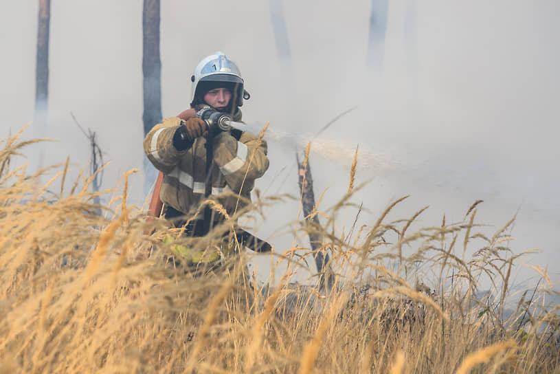 Пожарным, в том числе приехавшим из удаленных районов, сотрудникам областного управления лесного хозяйства и работникам районных комбинатов благоустройства Воронежа на автоцистернах удалось не допустить перехода пожара в верховой