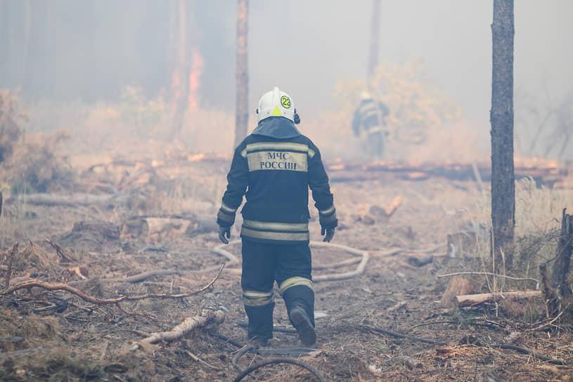 Локализованный на 50 га пожар в Медовке удалось полностью ликвидировать спустя сутки — в 9:40 понедельника