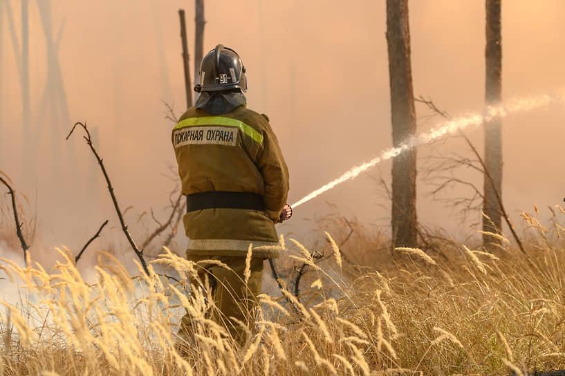 К девяти вечера зарево над лесом у Новоподклетного почти исчезло: немногие догоравшие очаги пожарные проливали из пожарных рукавов и садовых шлангов, протянутых с ближайших участков, а добровольцы разошлись