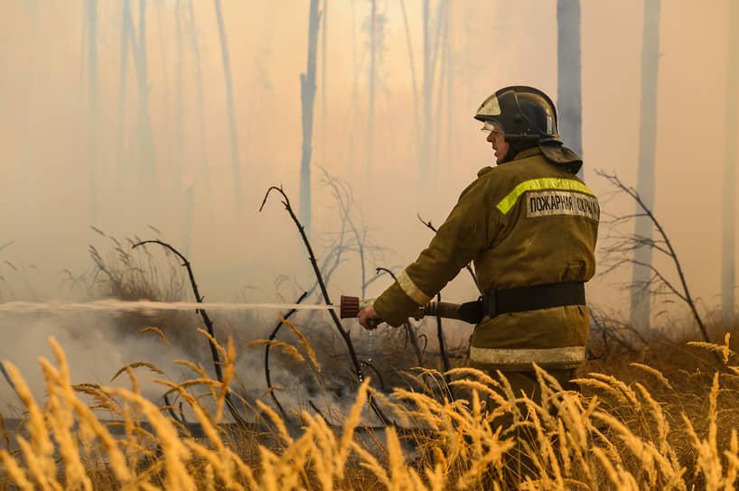 По данным областного управления лесного хозяйства, пожар в лесу южнее Новоподклетного произошел «на частной территории, приобретенной гражданами для строительства»