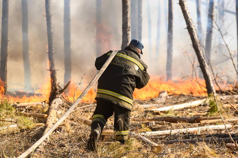 Распространению огня в воронежских лесах и полях на выходных способствовала захламленность участков сухой травой, сухостоем, поваленными деревьями и мусором. Пожарам предшествовало отсутствие осадков. А резкий рост площади возгораний отчасти объяснялся сильным ветром