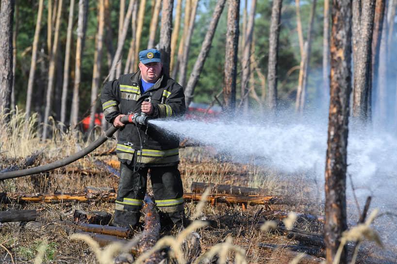 Сгоревший лес в Новоподклетном, по данным публичной кадастровой карты, разделен на сотни типовых участков для жилищного строительства