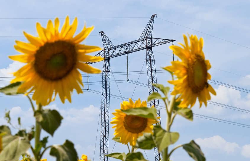 В 1926 году был разработан первый план электрификации сельского хозяйства Воронежской губернии на предстоящие пять лет. План предусматривал возведение 42 электростанций, в том числе двух гидроэлектростанций. Сейчас в Воронежской области промышленных гидроэлектростанций нет, но потребности сельского хозяйства в электроэнергии полностью обеспечены