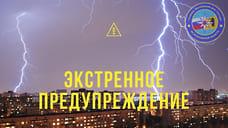 Ярославское МЧС экстренно предупредило о грозе и ливне