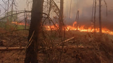 Похолодание в Ярославской области не отменило угрозу пожаров
