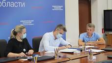 В Ярославской области кандидаты от «Яблока» подали документы на выборы в Госдуму