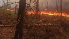 МЧС предупредило о чрезвычайной пожароопасности в Ярославской области