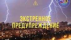 МЧС в Ярославле выпустило экстренное предупреждение о грозе и ливне