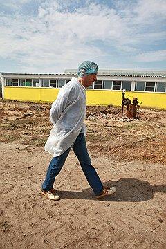 ЧИСТОТА — ЗАЛОГ ЗДОРОВЬЯ Без халата и шапочки в коровник «Спартака» не пускают даже директора компании