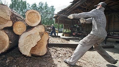 Прибыль в инвестициях  / Проблемы лесопромышленного комплекса обсуждают эксперты