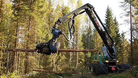 Древесина идет в рост  / лесопереработка