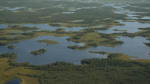 Китайцы несут деньги в российский лес  / Компании из КНР построят крупные комплексы в Томской области