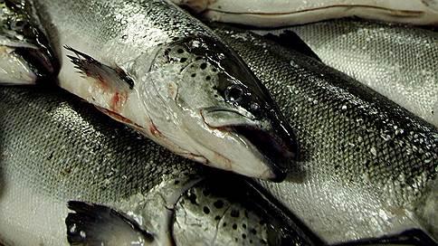 И рыба, и мясо  / продовольственная безопасность