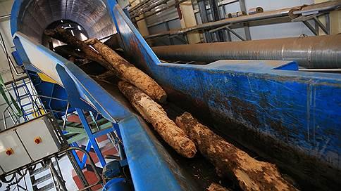 Лес в мешке  / производство