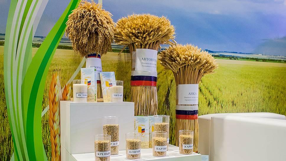 Продукты глубокой переработки зерна будут пользоваться спросом как на внутреннем, так и на внешнем рынках