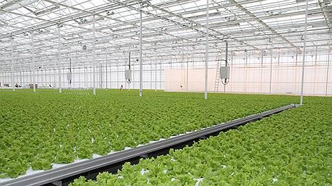 Безоблачные технологии  / агробизнес