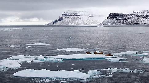 Профиль — арктический