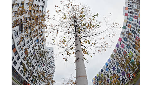 «Среда в жилых комплексах стала гуманной»  / Архитекторы о том, как изменилось жилье россиян