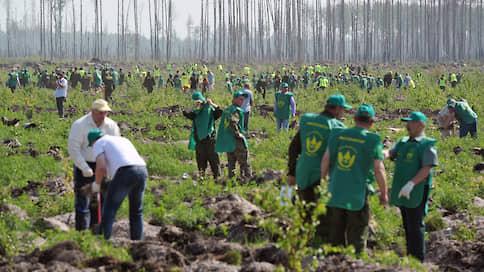 Делай, как я  / Первая в мире программа, которая дает возможность принять участие в восстановлении российских лесов любому человеку и компании