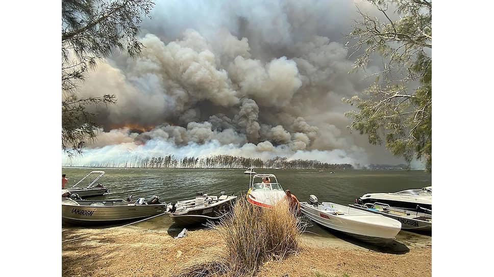 Во время пожаров в Австралии