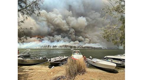 Парник для здравого смысла  / «Ъ-Регенерация» закрывает сезон охоты на климатических ведьм