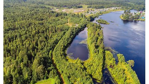 Дикая природа охлаждает планету  / Восстановление естественных экосистем — первый шаг в борьбе с климатическими изменениями