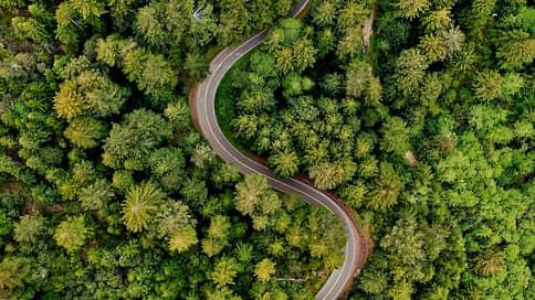 Натуральные инвестиции  / Сохранение и восстановление экосистем помогает климату