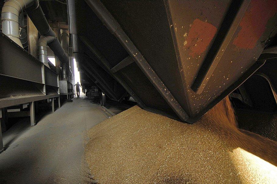 Рост производства пшеницы в России выявил нехватку качественных вагонов-зерновозов
