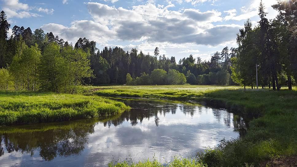 Основные идеи любой стратегии — удовлетворить потребности внутреннего рынка в лесобумажной продукции производства РФ, обеспечить экологическую безопасность и удовлетворить потребности в ресурсах и услугах леса