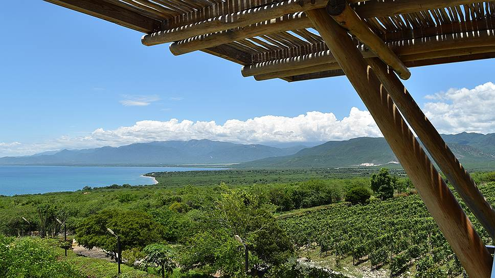 Винодельня Ocoa Bay