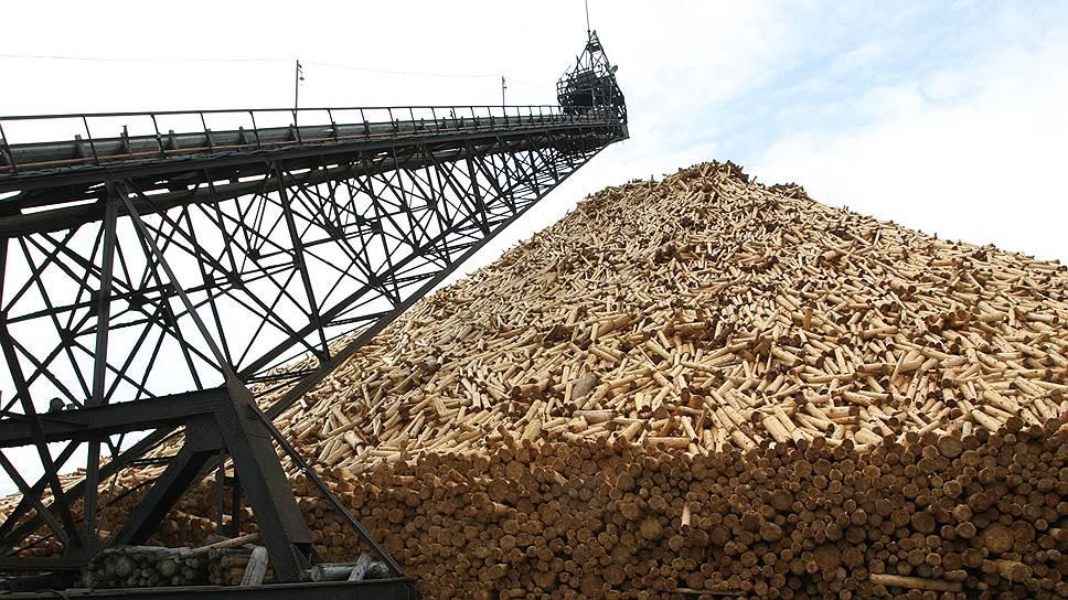 Региональные власти опасаются, что новый ЦБК существенно ухудшит экологическую обстановку