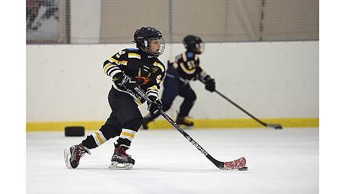 Холодные радости  / О хоккее, фигурном катании и горных лыжах для детей