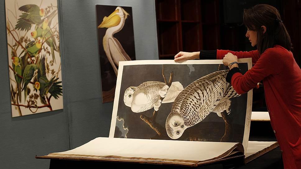 """Книга """"Птицы Америки"""" на книжных торгах аукциона  Sotheby's"""