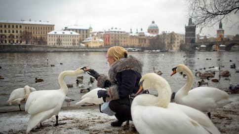 Новый год без моря  / В этом году туристы планируют экскурсионные поездки иначе
