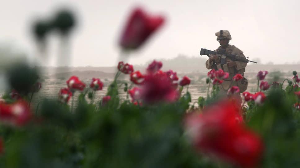 В 2001 году, когда США начали вторжение в Афганистан, опийным маком было засеяно 7606 га, годовое производство опиума составляло 180 тонн. За два десятилетия на борьбу с производством наркотика было израсходовано $10 млрд. В 2020 году площадь посевов опийного мака составляла 224 тыс. га, объем производства опиума оценивался в 6,3 тыс. тонн