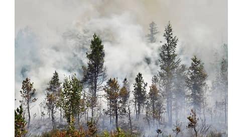Россия в огне  / Пожары 2021 года потребовали много средств и системных решений