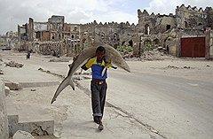 """Омар Фейсал (для Reuters). """"Человек несет акулу по улицам Могадишо, Сомали, 23 сентября 2010 года"""". Первое место в категории """"Повседневная жизнь. Одиночные фотографии"""""""