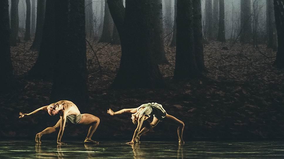 """""""Фавн"""". Хореограф Сиди Ларби Шеркауи, Королевский балет Фландрии"""
