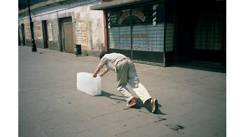 Человек гуляющий  / Анна Толстова о том, как современное искусство учит нас правильно гулять