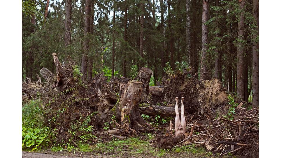 Андрей Кузькин. «Явление природы, или 99пейзажей с деревом»