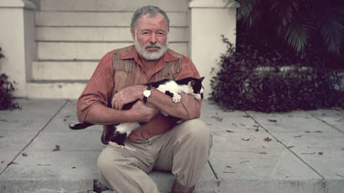 Портрет писателя с котиком  / Домашние животные, помогавшие писателям писать
