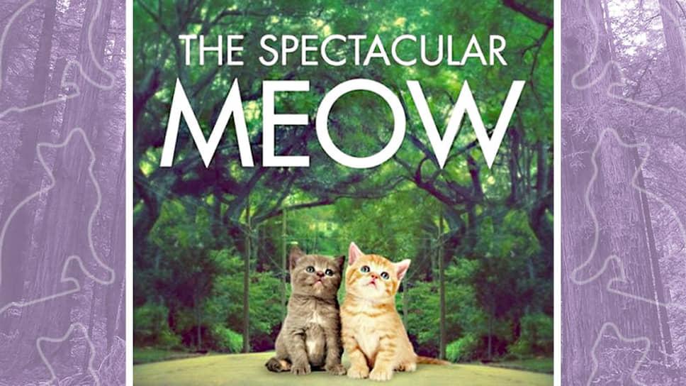 Мем-постер, выпущенный к премьере фильма «Захватывающее время»