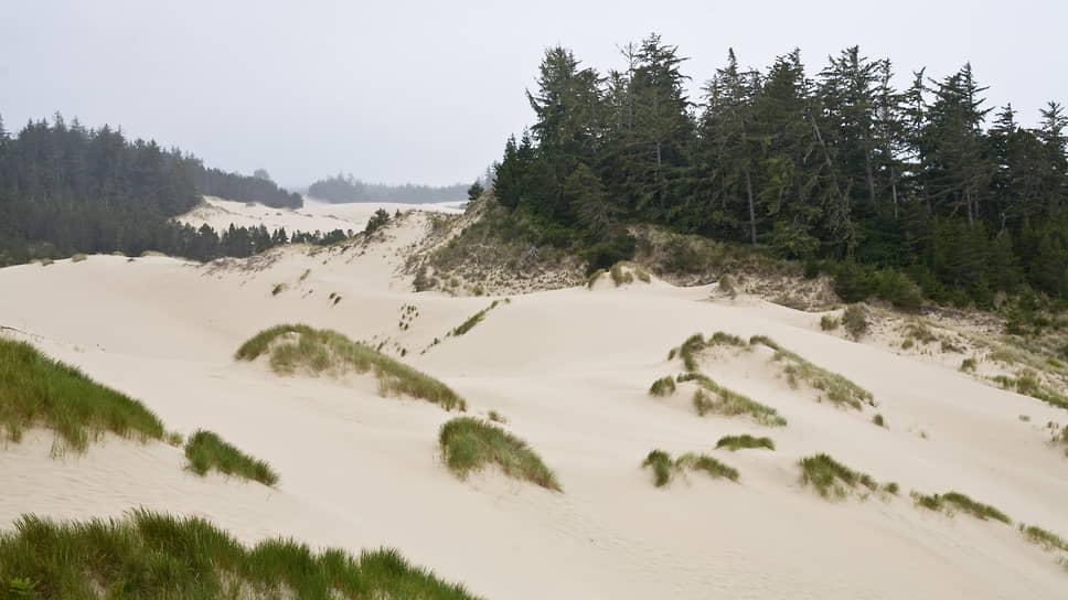 Дюны в Орегоне, 2008