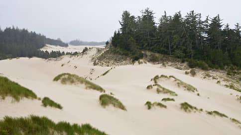 История, построенная на зыбучем песке  / Долгий путь романа «Дюна» к книге и экрану