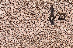 Инициаторы борьбы с потеплением не сомневаются, что выложить десятки миллиардов долларов согласятся все — одни страны из страха засохнуть, другие — из опасения утонуть