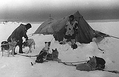 Прибывающим на Север руководство стройки предлагало комфортабельное размещение в уютных нежарких палатках (на фото) и просторных непостроенных бараках