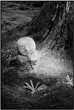 Мартина Франк. «Сэнсэй в храмовом саду», 2008