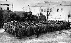 Бесчеловечное отношение к австрийским пленным выработало у некоторых из них нечеловеческую ненависть к царскому строю вообще и его отдельным представителям в частности