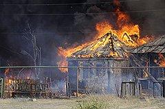 5,56 — лесные пожары в Центральной России, 30 июля