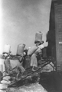 Падение грузооборота железных дорог с началом войны сопровождалось пропорциональным ростом оборота аппаратчиков в структурах Наркомпути